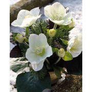 Art vánoční aranžmá růží DANITA v hliněném květináči, bílozelená, 20cm