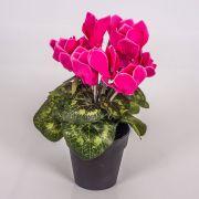Umělý brambořík HEIDI v dekoračním květináči, růžová, 25cm, Ø5-8cm