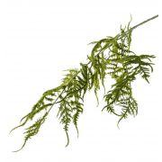 Art Asparagus plumosus větev CHRISTIAN, zelená, 85cm