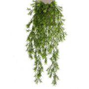 Věšák Art Asparagus sprengeri COLE, hůl, 75cm